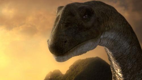 Argentinosaurus Head