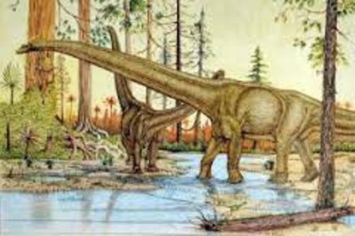 Argentinosaurus Image