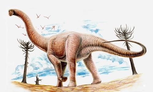 Argentinosaurus Pic