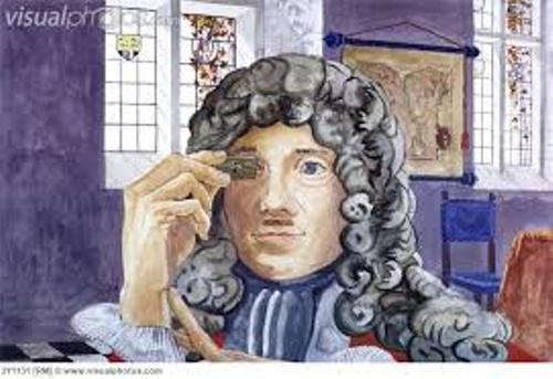 Facts about Anton van Leeuwenhoek