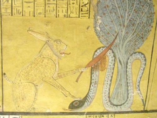 Facts about Apep
