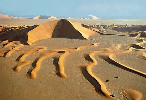 Facts about Arabian Desert