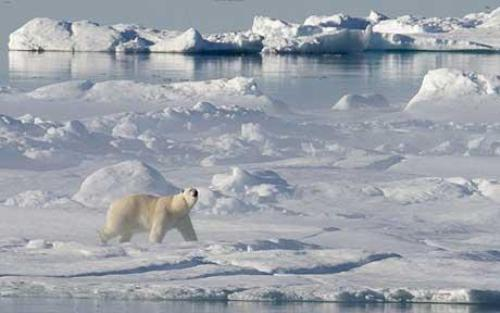 Facts about Arctic Ocean