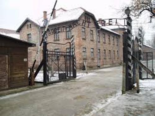 Auschwitz Concentration Camp Facts