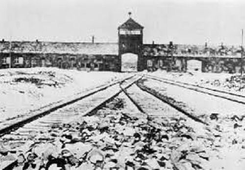 Auschwitz Concentration Camp Pic