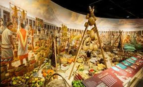 Aztec Food and Farming