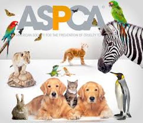 Facts about ASPCA