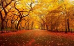 10 Facts about autumn