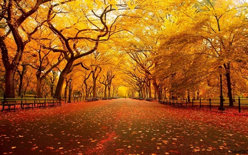 Facts about Autumn