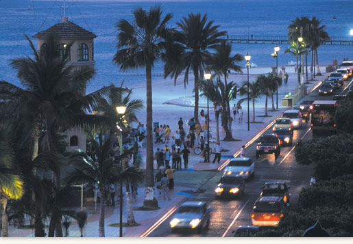 Baja California Sur At Night