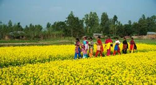Bangladesh Pic