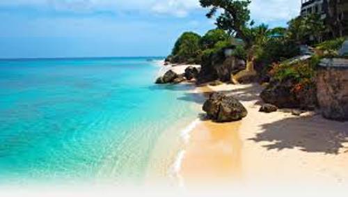 Barbados Beauty