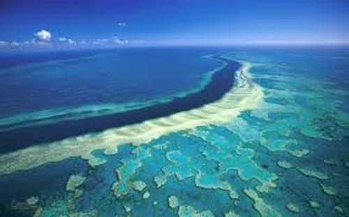 Barrier Reef Facts