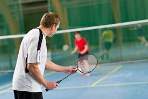 Facts about Badminton
