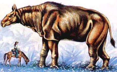 Facts about Baluchitherium