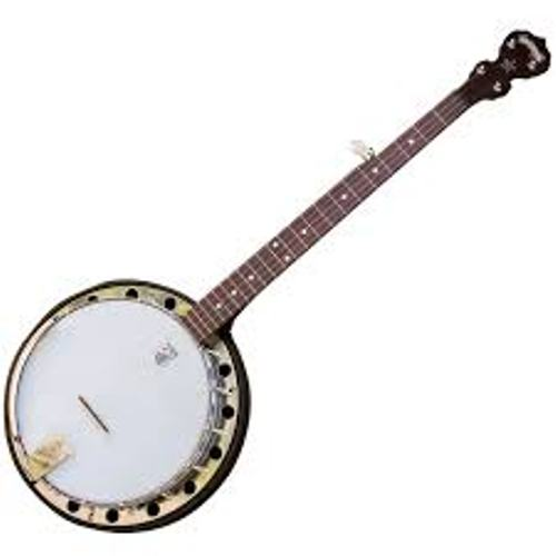 Facts about Banjos