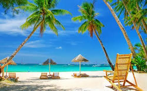 Beach Picture
