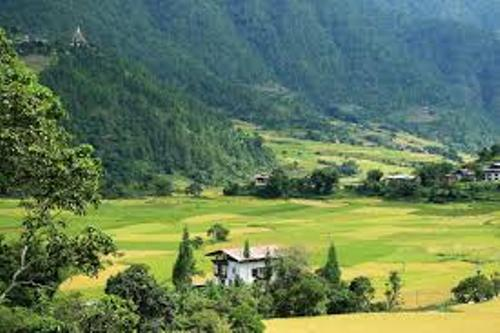Bhutan Pic