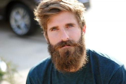 Brilliant 10 Facts About Beards Fact File Short Hairstyles Gunalazisus