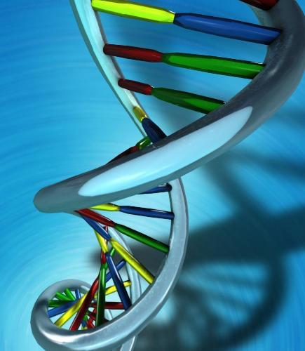Biochemistry DNA