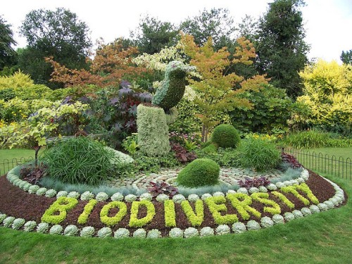 Biodiversity Pic