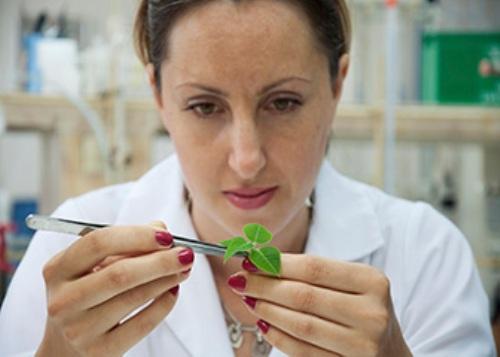 Biologist Job
