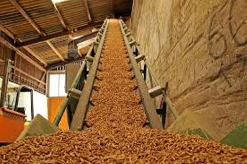 Biomass Pic
