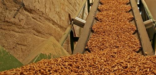 Biomass Types