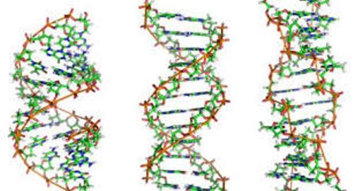biomolecule pic