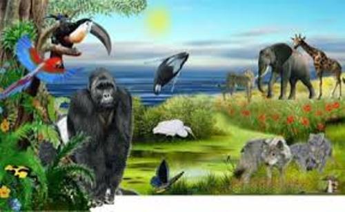 Biosphere Pictures