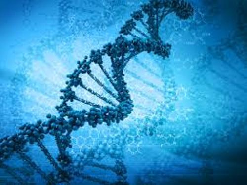 Biotechnology DNA