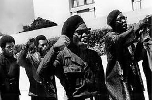 Black Panther Party Member