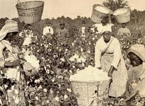 Black Slavery Pictures