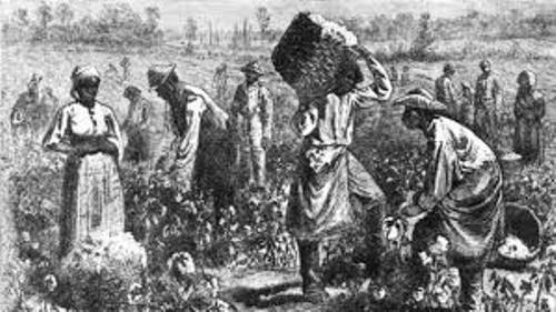 Black Slavery in America Facts