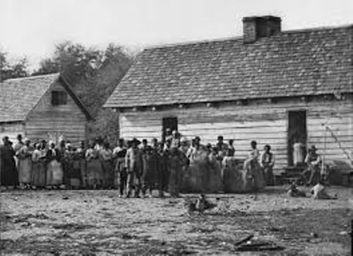 Black Slavery in America Picture