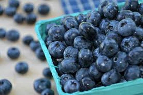 Blueberries Facts