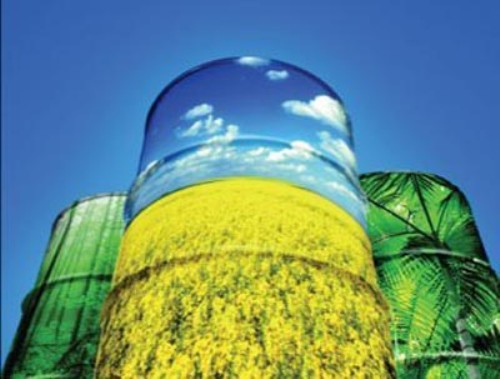 Facts about Biodiesel