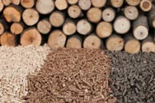 Facts about Biomass