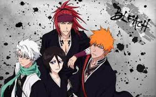Facts about Bleach
