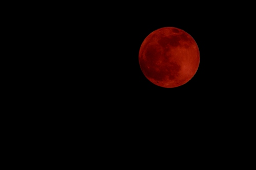 Facts about Blood Moon