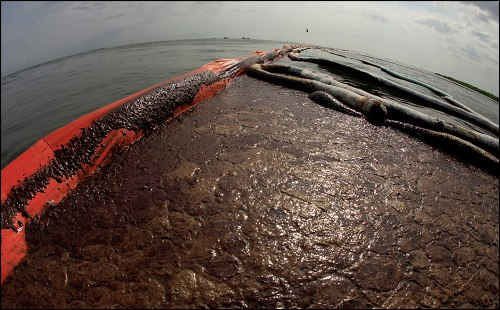 BP Oil Spill Photo