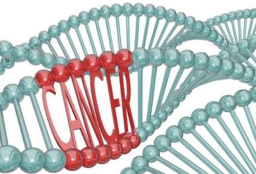 BRCA Gene Image