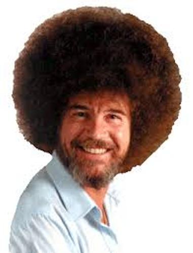 Bob Ross Hair