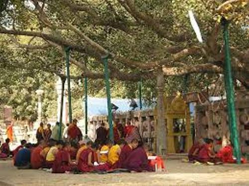 Bodh Gaya Picture