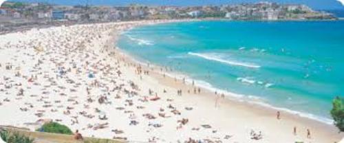 Bondi Beach Pic