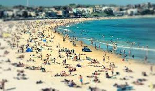 Bondi Beach Visitors