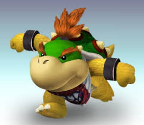 Bowser Jr Facts