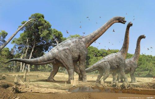 Brachiosaurus Image