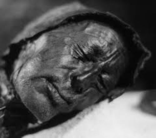 Facts about Bog Bodies