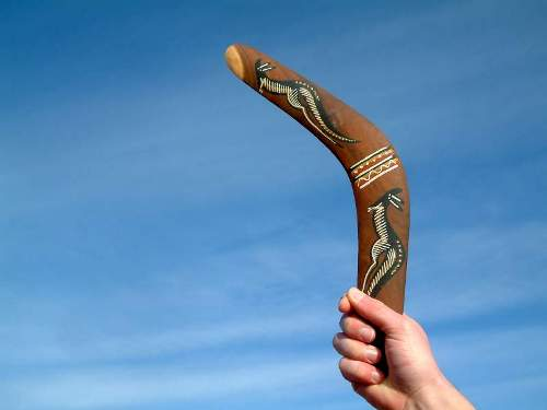 Facts about Boomerangs